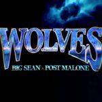 Big Sean Wolves